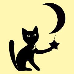Cat-1501139 960 720