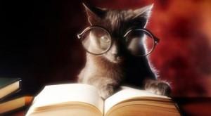 Enjoy the reading !